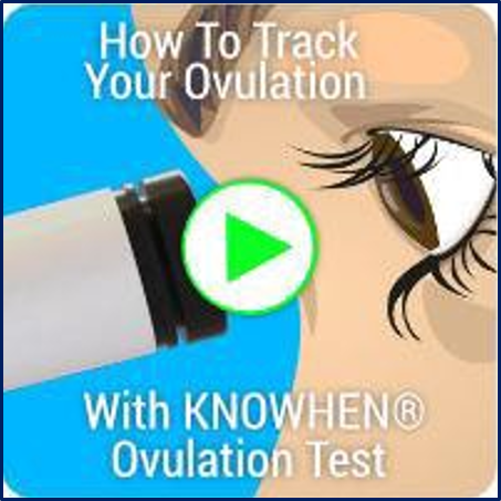 Test saliva daily to determine if you're ovulating