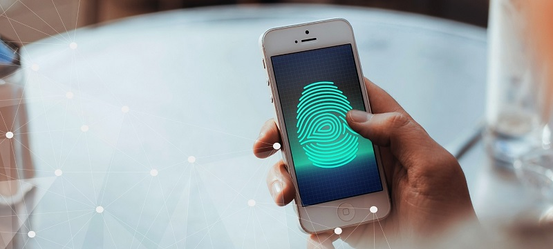Biometric Payment Market