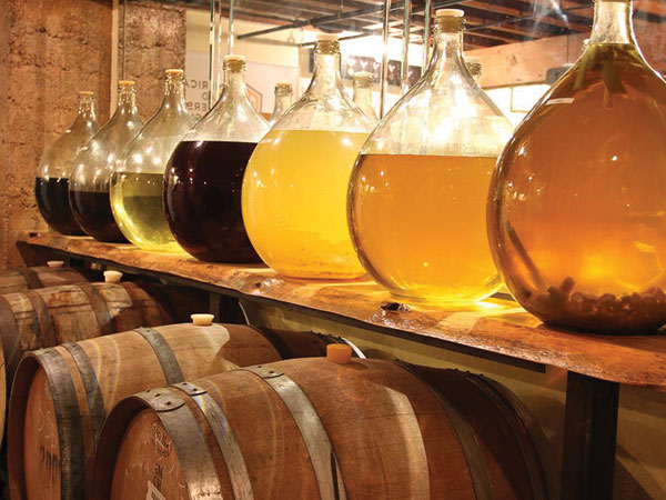 Honey Wine Market