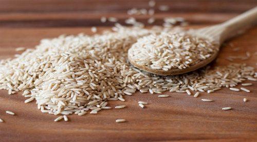 Rice Protein Market