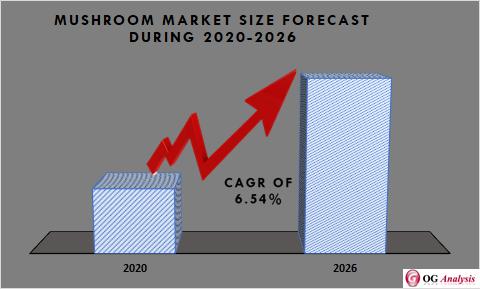 Global Mushroom Market