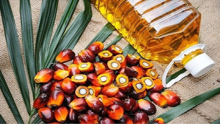 Sustainable Palm Oil Market