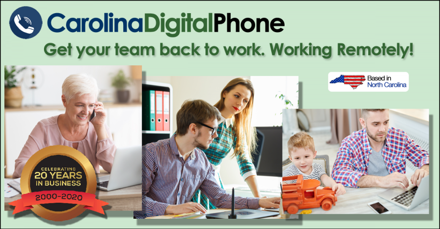 Get Your Team back to Work. Working Remotely!