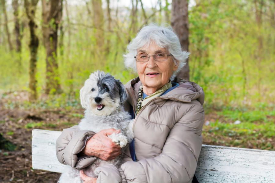Comfort Keepers Best Dogs for Seniors