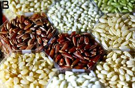 Global Seed Treatment Market