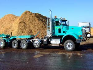 BioMass Aviation Biofuel Wood Waste NWABF