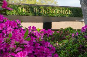 Pink Azaleas blanket The Houstonian's property.