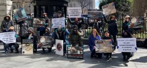 demonstrators outside city hall against slaughthouses