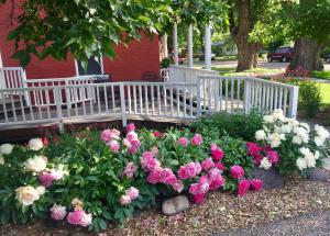 Whatever the season, Colorado B&Bs offer the perfect choice to #BookDirect and #BookAhead
