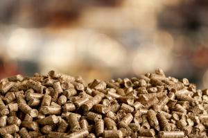 woody biomass feedstock to biojet fuel