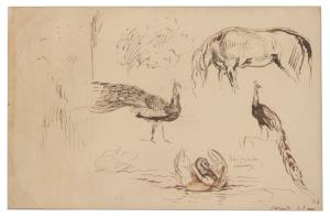 Ink on paper Studies of Animals by Eugene Delacroix (French (1798-1863).