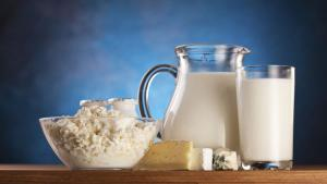 Dairy Ingredients Market Share