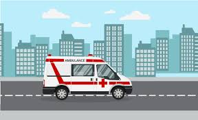 Medical Transport Services Market Size