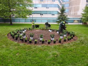 Installing the pollinator garden