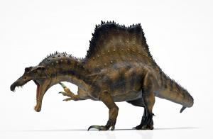 Spinosaurus reveals the hand talons it used to defend itself. (artist: Manuel Gil)