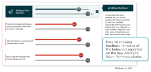 Sample of behavioral feedback in the Ability to Work Cluster
