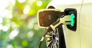 Electric Vehicle Supply Equipment Market Share
