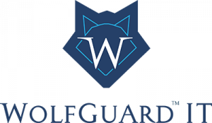 WOLFGUARD IT Ranked Among World's Most Elite 501  Managed Service Providers