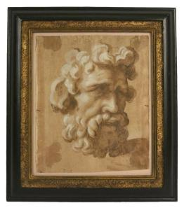 School of Annibale Carracci, Mixed Media on Paper, Study of a Head