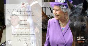 Her Majesty, Queen Elizabeth, II Recognizes Marty Irby   Photo: Craig Swanson Design