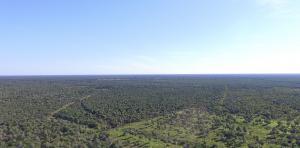 El proyecto REDD+ más grande del Chaco paraguayo ya está en marcha