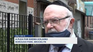 Dr. Joshua Weinstein Speaking with Brooklyn News 12