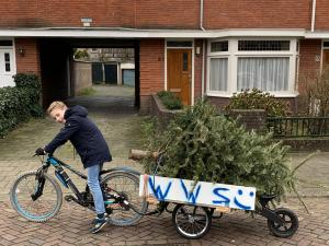 Walter's collecting trees for children's cancer charity