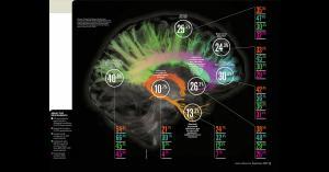 Mental Impact of the Pandemic
