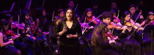 LAMusArt Youth Orchestra