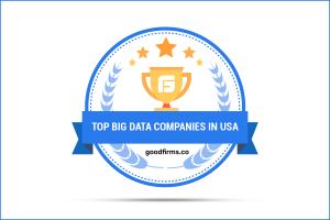 Top Big Data Companies in USA