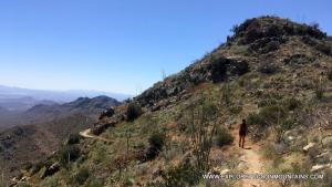 Hiking Trail in the Tucson Mountains