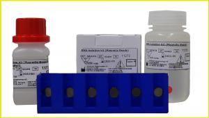 Genekam magnetic beads RNA isolation kit can be used to isolate the viral and tumor from different samples like nasal swabs, tissue, plasma, cell cultures etc