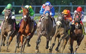 Horse racing death