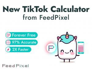New TikTok money calculator from FeedPixel