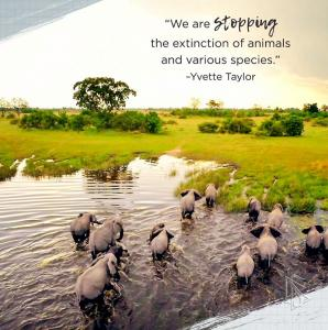 Each year brings the deaths of more endangered species. Earth Organization is committed to preventing this catastrophe