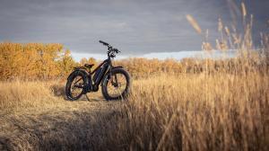 Biktrix bike