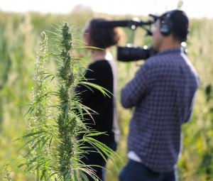 Behind the scenes, Mary Janes: The Women of Weed