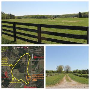 118.51± acres of timber and fenced pasture land -- Offered in tracts of 114 +/- acres, 4.5± acres & in its entirety of 118.5± acres -- in Keysville, VA