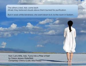 Lot's Wife, Ado, Turns Into a Pillar of Salt by Cesca Janece Waterfield