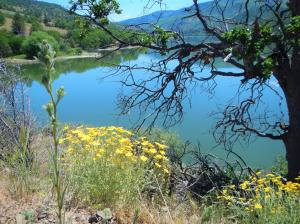Copco Lake is a scenic mountain lake that supports wildlife and water resources