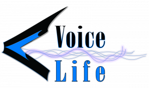 Voice Life with Partner Verge currency, enters MOU with the DAO rLoop, A future of works platform to work on space based charging technology