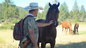 A mighty mountain stallion, greets Naturalist William E. SImpson II