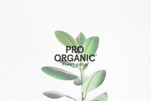 Shin Nong Logo on a plant