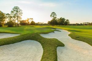 Photograph from The Clubs at Houston Oaks of their professional golf course.
