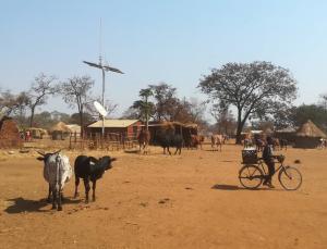 AMN rural mobile network base station in Africa