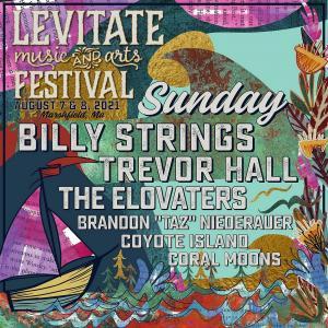 Levitate Music Festival Discount Tickets Promo Code