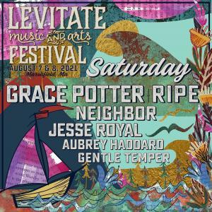"The Levitate Music Festival Promo Code is ""RSVP"" LFM21"