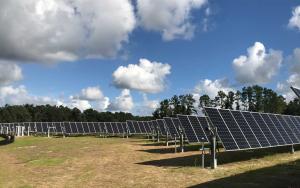 Solar Farm Installation