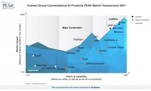 Everest Group PEAK Matrix®