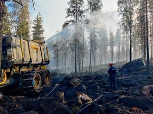 PPO® ForExt stops and prevents the spread of forest and wild fire